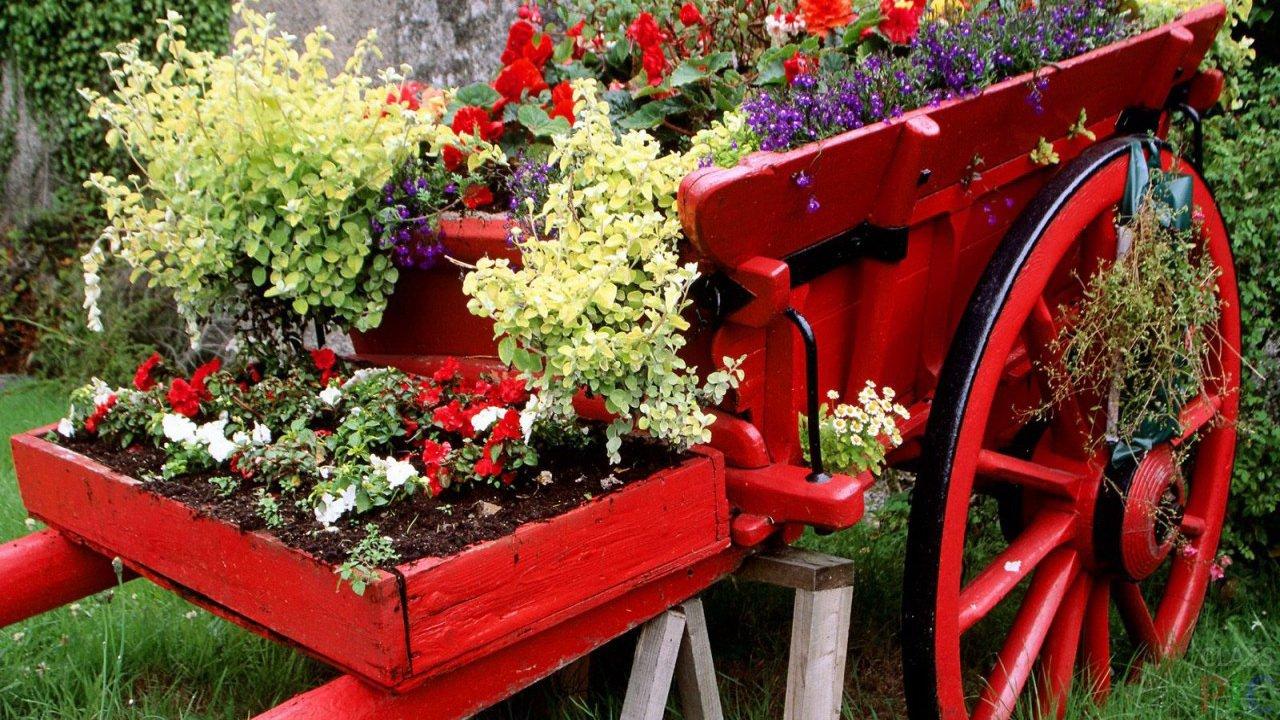 заповеднике картинки цветников в саду своими руками является желанным