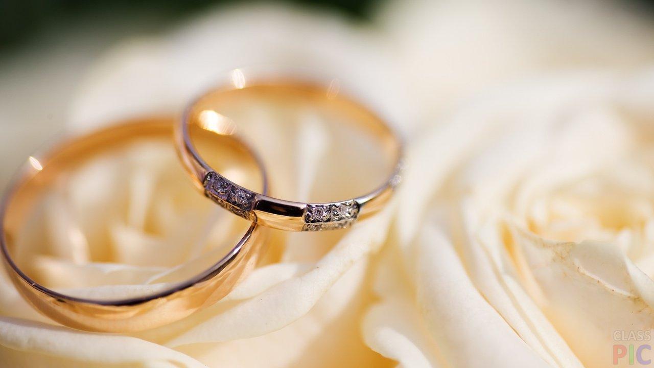 Обручальные кольца (27 фото)