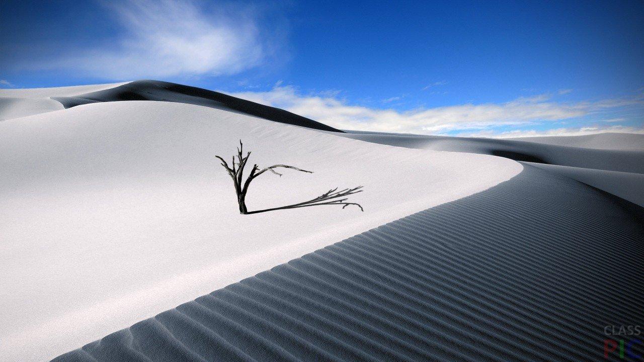 Пустыня (50 фото)