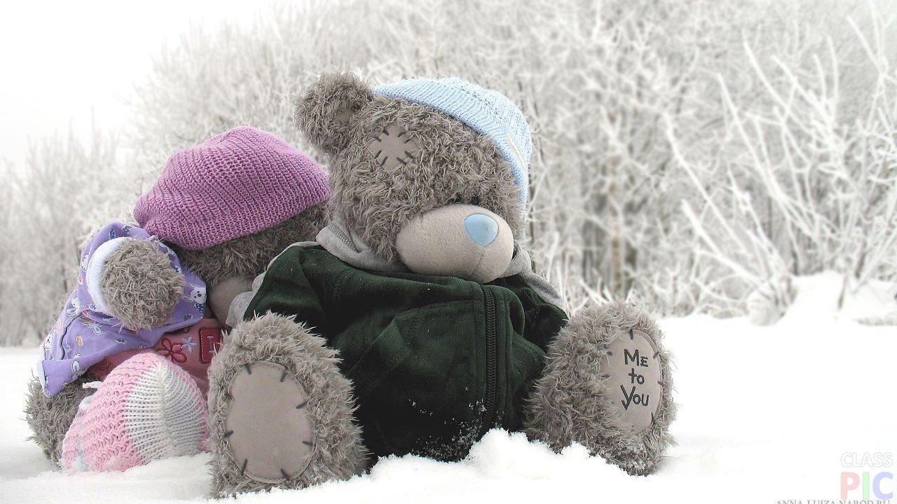 Картинки мишек тедди в зимой
