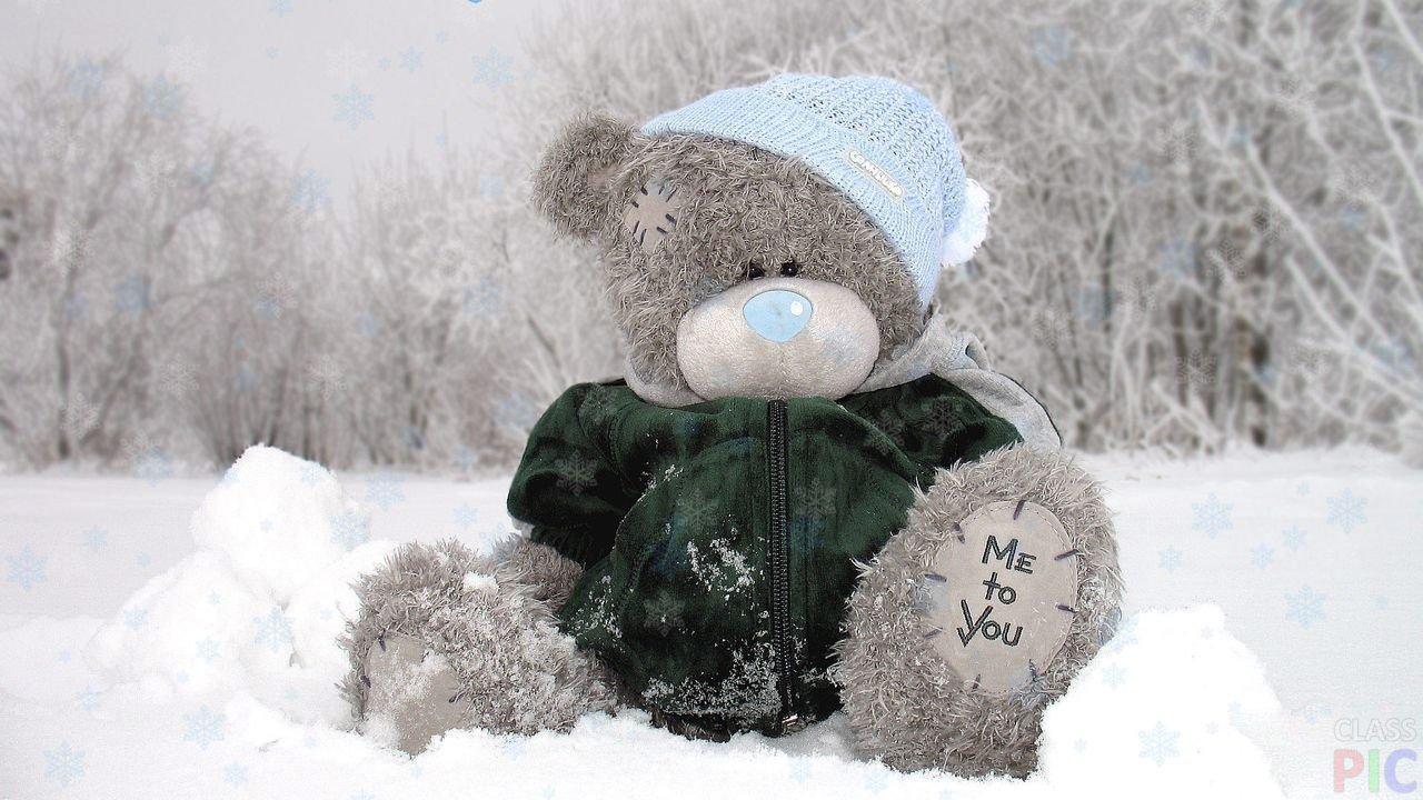 Мишка Тедди (37 фото)