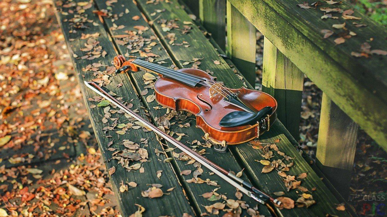 артистки держал осень скрипка картинки фисташкового