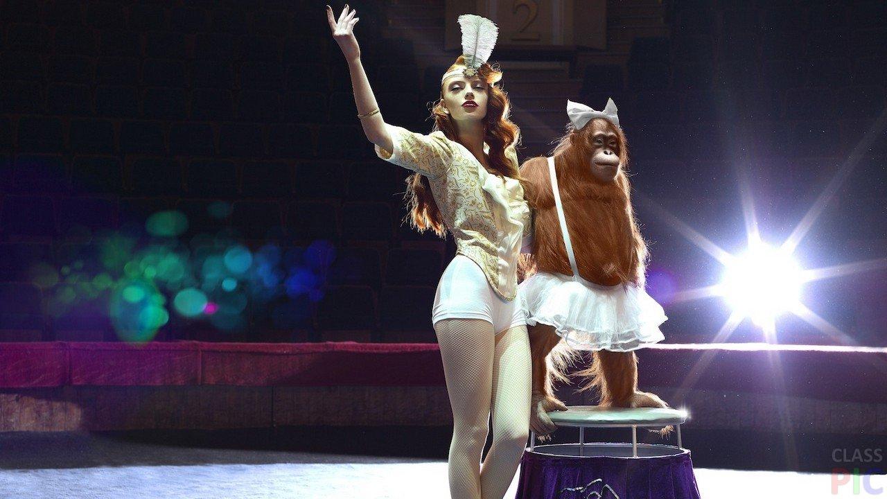 Фото девушек циркачек дырке