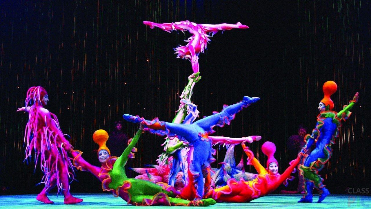 Цирк (32 фото)