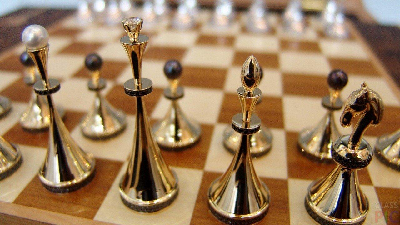 Шахматы (29 фото)