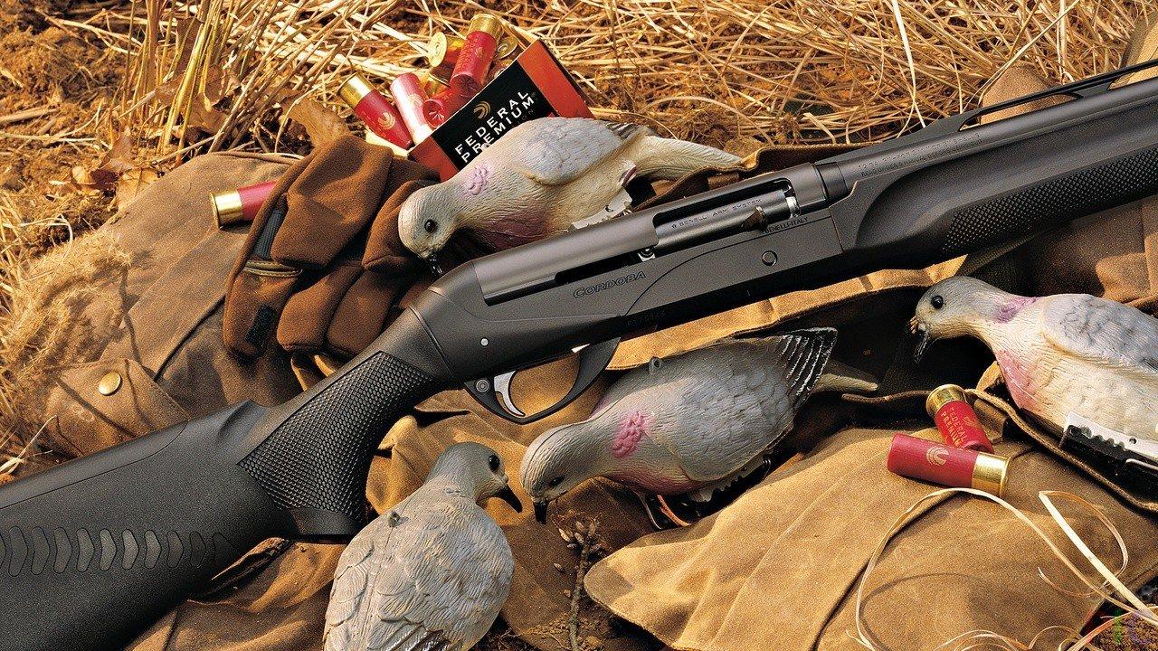Ружье картинки на охоте