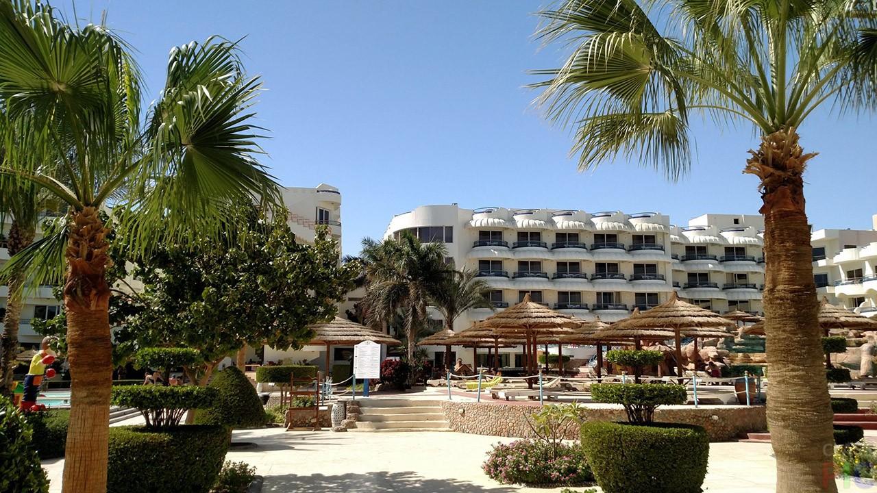 Фото отелей Египта