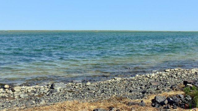 Аральское море (31 фото)