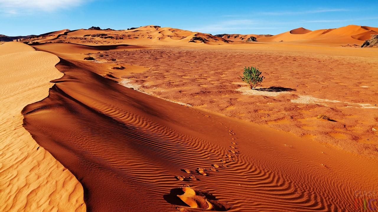 Сахара (34 фото)