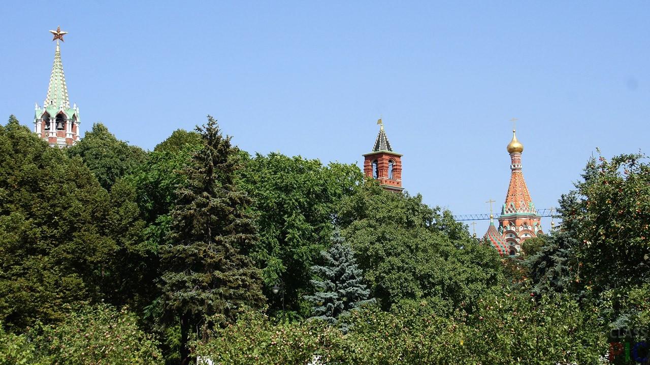 типо моя кремлевский сквер в москве фото для
