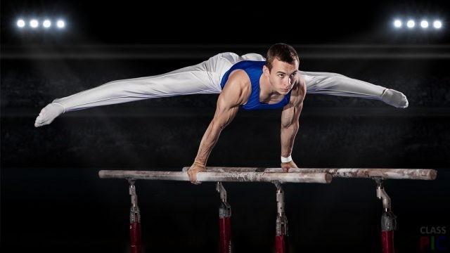 Гимнасты (27 фото)