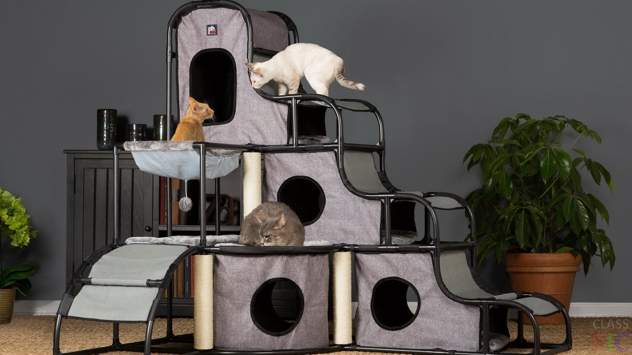 Домики для кошек (31 фото)